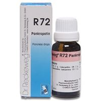 Picture of Dr. Reckeweg R 72 Pancreas Drops  - 22 ML