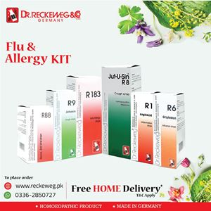 Flu And Allergy